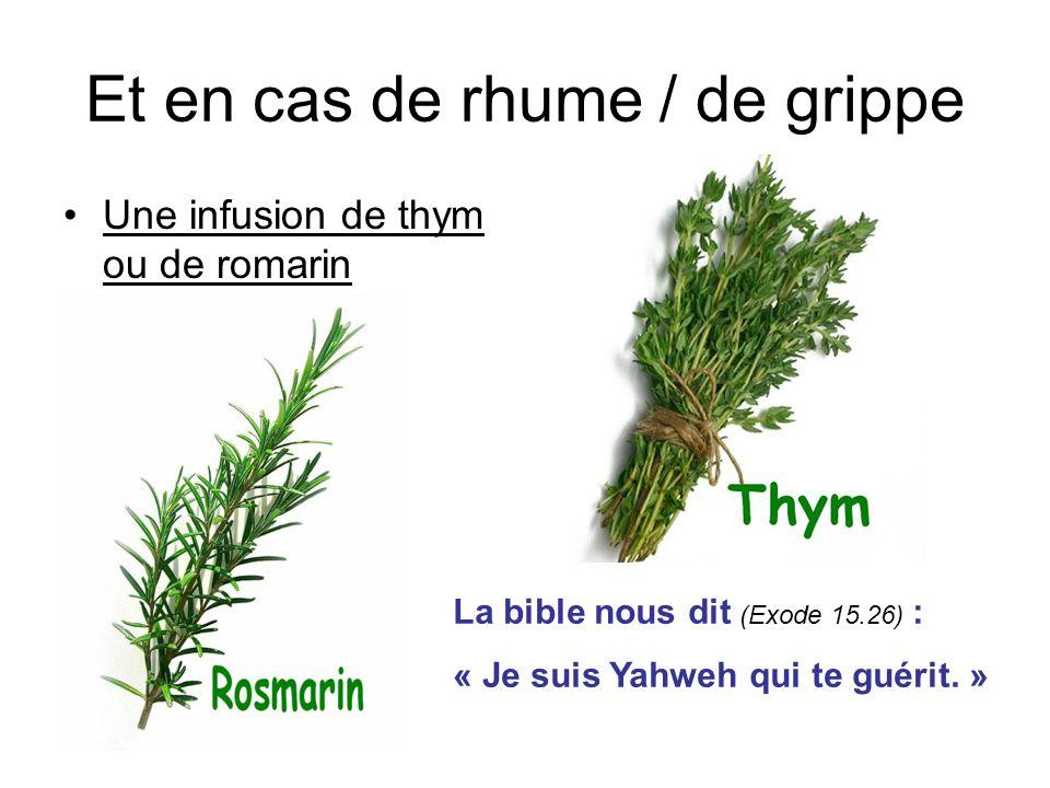 Et en cas de rhume / de grippe Une infusion de thym ou de romarin La bible nous dit (Exode 15.26) : « Je suis Yahweh qui te guérit. »