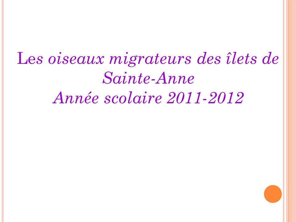 Le s oiseaux migrateurs des îlets de Sainte-Anne Année scolaire 2011-2012