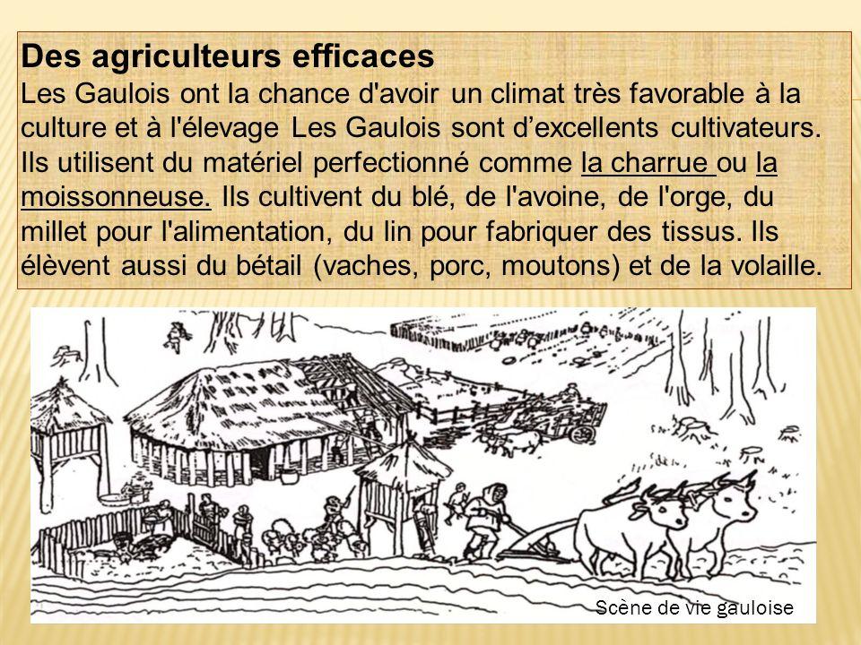Des agriculteurs efficaces Les Gaulois ont la chance d'avoir un climat très favorable à la culture et à l'élevage Les Gaulois sont dexcellents cultiva