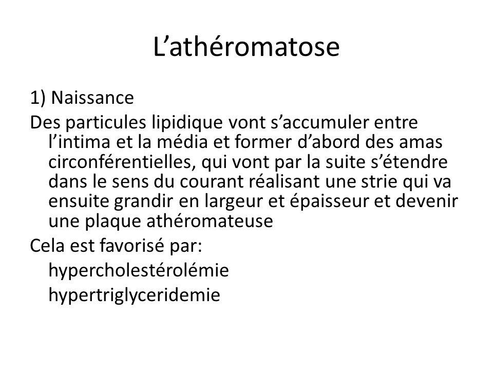 Lathéromatose 1) Naissance Des particules lipidique vont saccumuler entre lintima et la média et former dabord des amas circonférentielles, qui vont par la suite sétendre dans le sens du courant réalisant une strie qui va ensuite grandir en largeur et épaisseur et devenir une plaque athéromateuse Cela est favorisé par: hypercholestérolémie hypertriglyceridemie