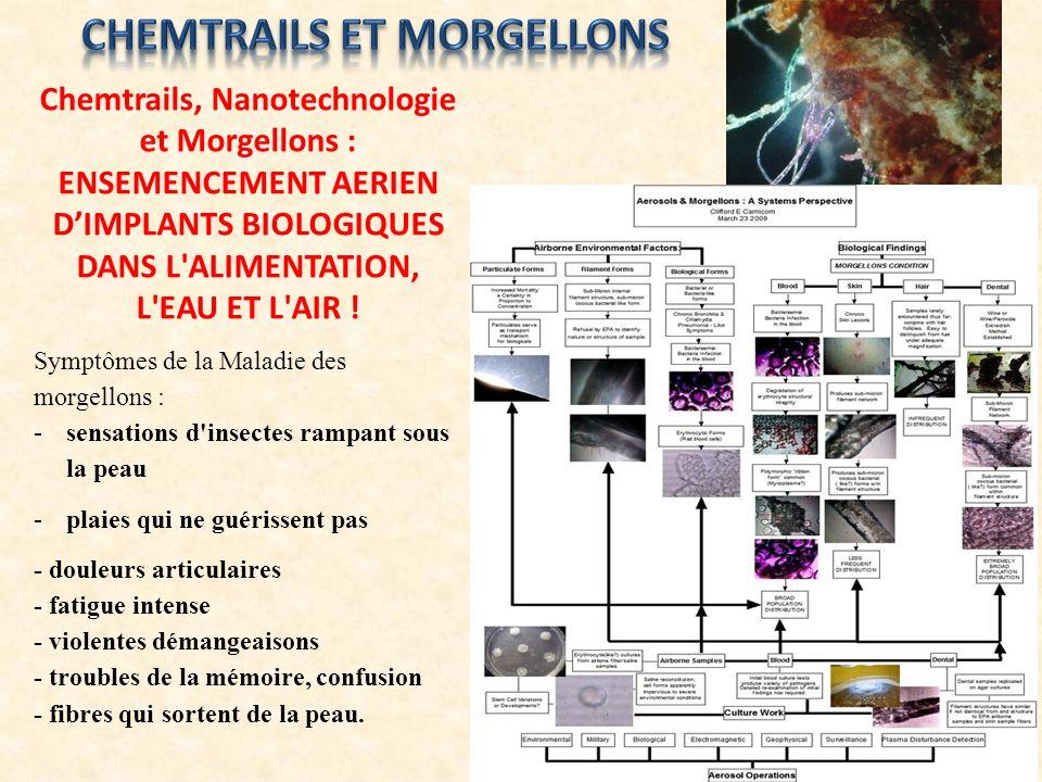 Chemtrails, Nanotechnologie et Morgellons : ENSEMENCEMENT AERIEN DIMPLANTS BIOLOGIQUES DANS L'ALIMENTATION, L'EAU ET L'AIR ! Symptômes de la Maladie d