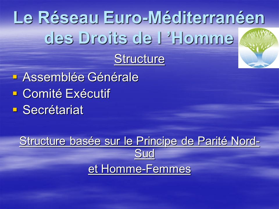 Le Réseau Euro-Méditerranéen des Droits de l Homme Structure Assemblée Générale Assemblée Générale Comité Exécutif Comité Exécutif Secrétariat Secrétariat Structure basée sur le Principe de Parité Nord- Sud et Homme-Femmes