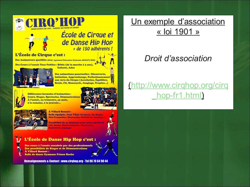 Un exemple dassociation « loi 1901 » Droit dassociation (http://www.cirqhop.org/cirq _hop-fr1.html)http://www.cirqhop.org/cirq _hop-fr1.html