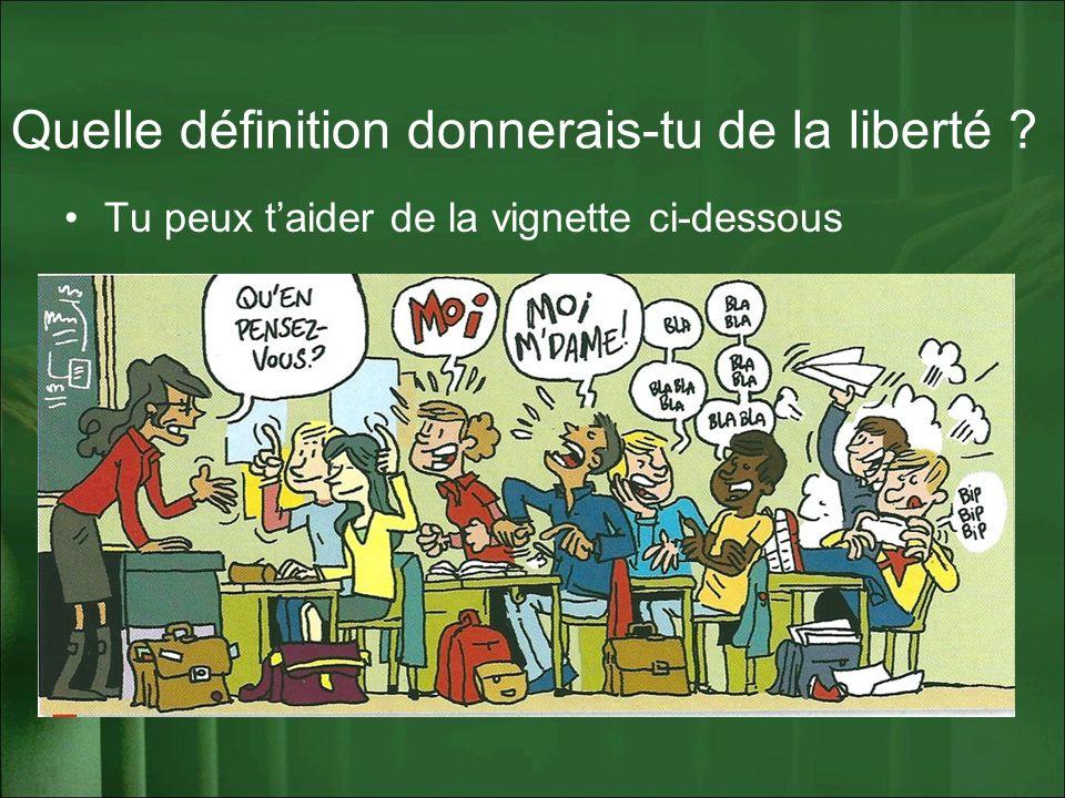 Quelle définition donnerais-tu de la liberté ? Tu peux taider de la vignette ci-dessous
