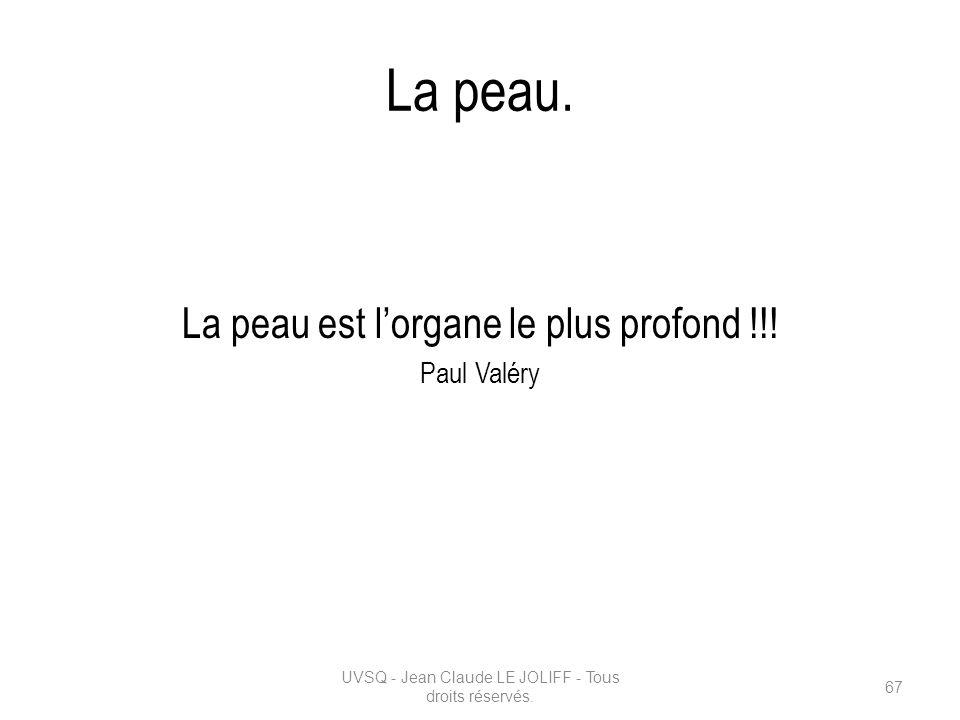 La peau. La peau est lorgane le plus profond !!! Paul Valéry UVSQ - Jean Claude LE JOLIFF - Tous droits réservés. 67