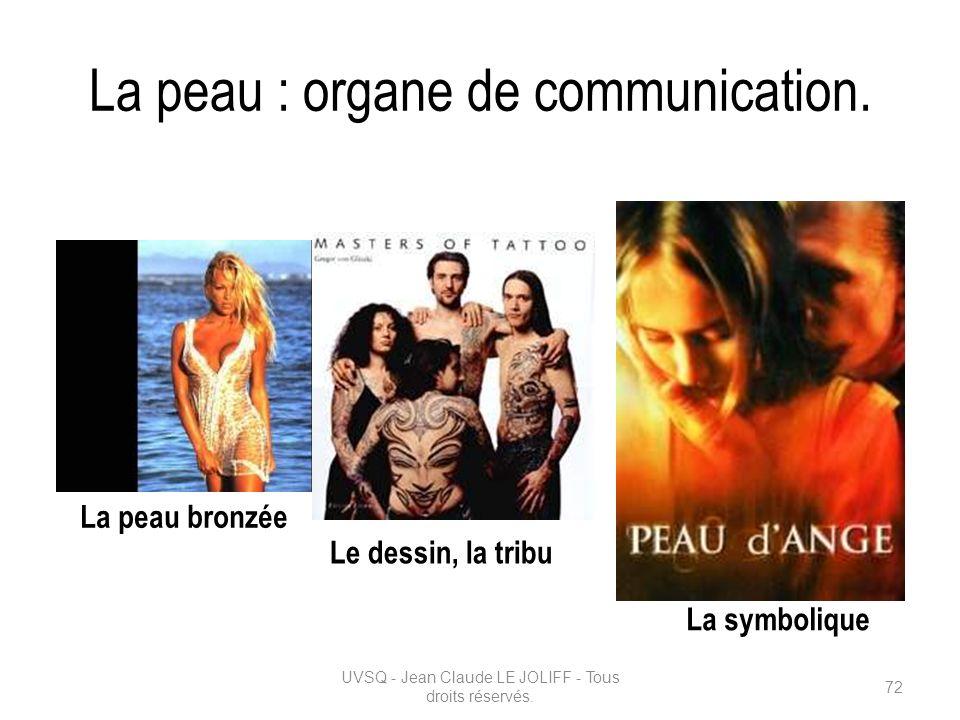 La peau : organe de communication. UVSQ - Jean Claude LE JOLIFF - Tous droits réservés. 72 La peau bronzée Le dessin, la tribu La symbolique