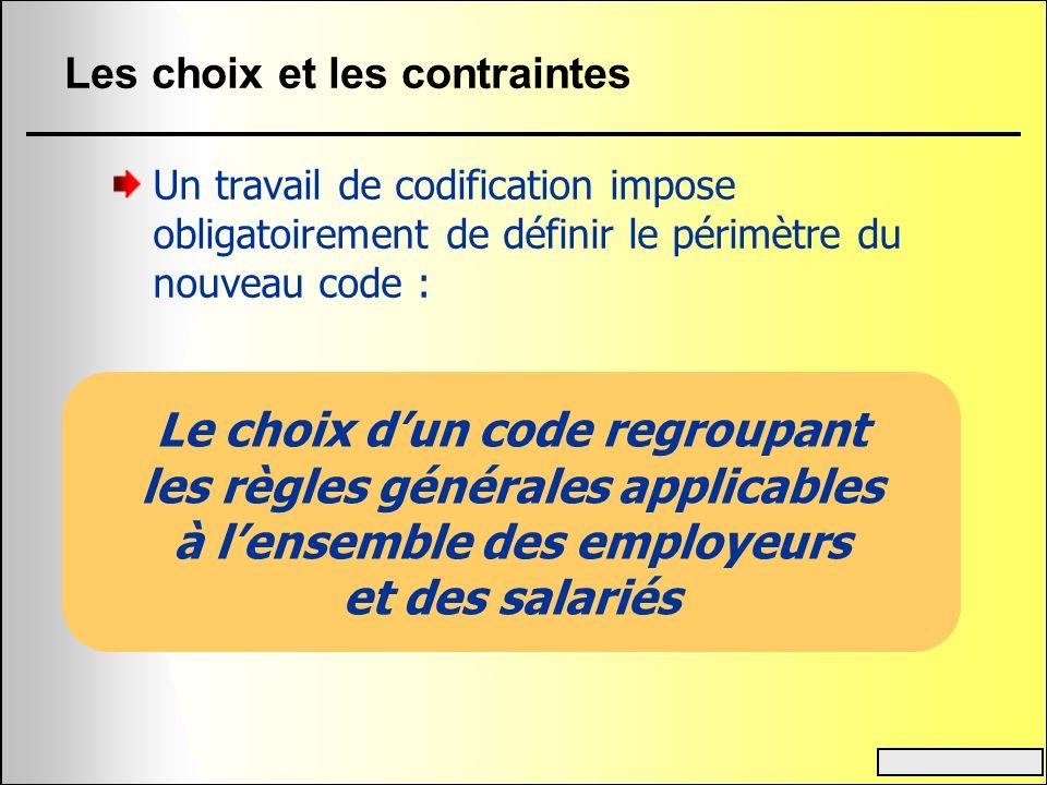Les choix et les contraintes Un travail de codification impose obligatoirement de définir le périmètre du nouveau code : Le choix dun code regroupant