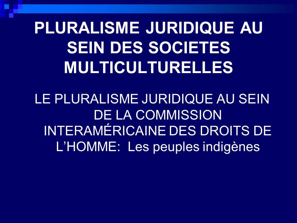 La Commission Crée en 1959 par les 35 etats membres de lOEA avec la tâche de promouvoir le respect de des droits de lhomme.