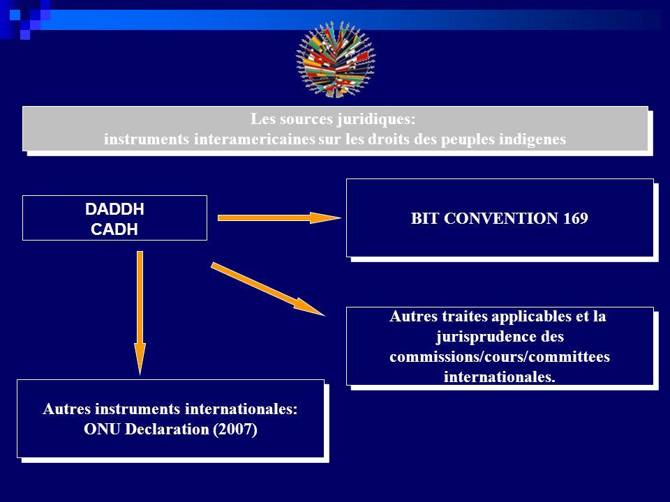 Development des droits territoriales des peuples indigenes en la jurisprudence de la systeme interamericaines CIDH RAPPORTS SUR LES PAYS YANOMAMI DANN MAYA DE TOLEDO CORTE INTERAMERICANA AWAS TINGNI YAKYE AXA SAWHOYAMAXA SARAMAKA XAKMOK-KASEK RAPPORT SUR LES DROITS TERRITORIALES