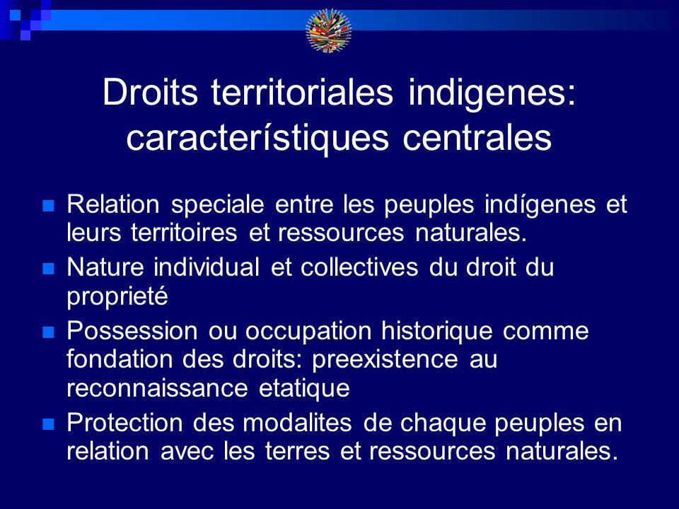 DROITS TERRITORIALES INDIGENES GEOGRAPHIQUE: AMPLE SELON LA RELATION SPECIALE PLEIN DOMINION JURIDIQUE: RECONNAISSANCE, TITRE, REGISTRATION CERTITUDE JURIDIQUE DU TITRE DE PROPRIETE DELIMITACION ET DEMARCACION DES TERRES ANCESTRALES POSSESSION, USES, OCCUPATION DU TERRITOIRE BASE DU DROIT A LA PROPRIETE CONTROL EFFECTIF PAR LA POPULATION INDIGENE; DISFRUTE PACIFIQUE: PROTECTION CONTRES LES CONFLITS VIOLENTES EXERCISE DE LA RELATION SPIRITUEL ENTRE LA POPULATION ET LA TERRITOIRE: PROTECTION ET ACCES AUX SITES SACRES ADMINISTRATION ET EXPLOTATION DROIT AU RESTITUTION DU TERRITOIRE ANCESTRAL