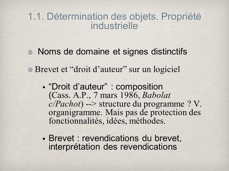 1.1. Détermination des objets. Propriété industrielle Noms de domaine et signes distinctifs Brevet et droit dauteur sur un logiciel Droit dauteur : co