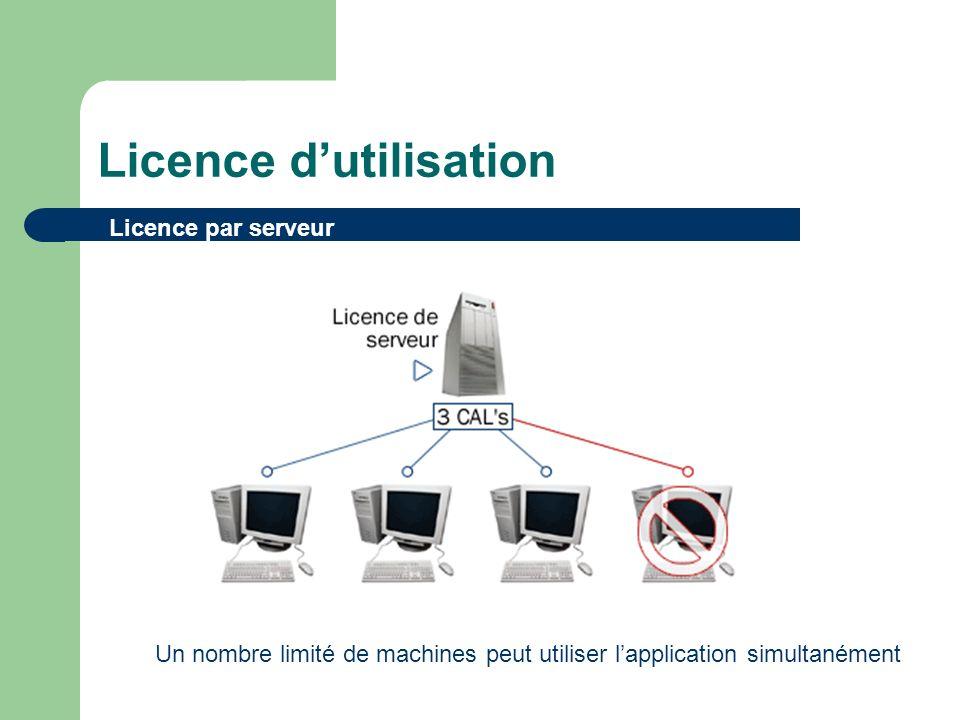 Licence dutilisation Licence par serveur Un nombre limité de machines peut utiliser lapplication simultanément
