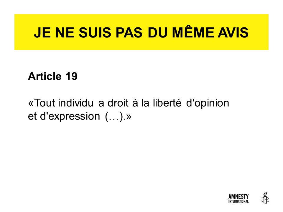 ICH SEH DAS ANDERS. Article 19 «Tout individu a droit à la liberté d'opinion et d'expression (…).» JE NE SUIS PAS DU MÊME AVIS