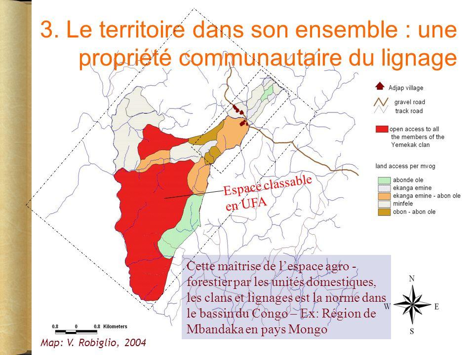 3.Le territoire dans son ensemble : une propriété communautaire du lignage Map: V.