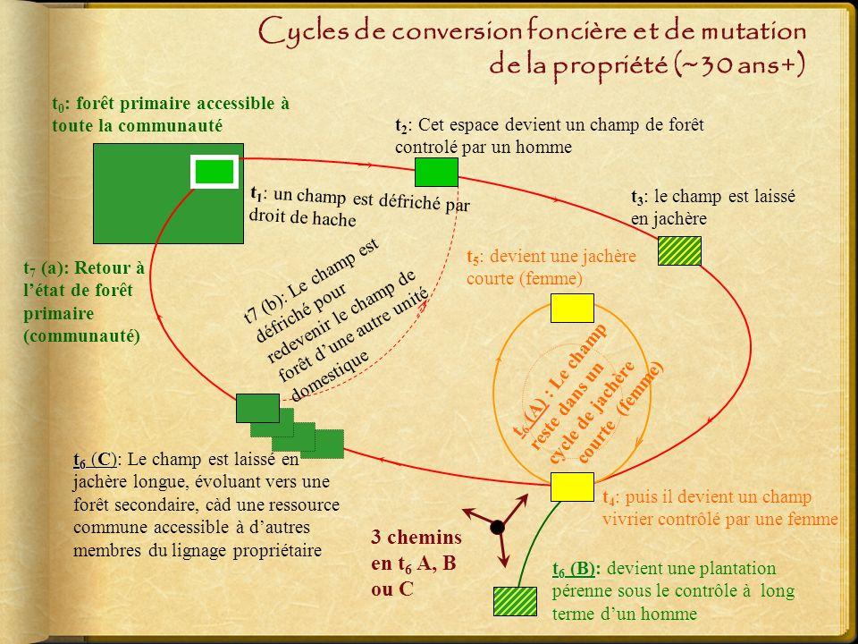 Cycles de conversion foncière et de mutation de la propriété (~30 ans+) t 7 (a): Retour à létat de forêt primaire (communauté) t7 (b): Le champ est défriché pour redevenir le champ de forêt dune autre unité domestique t 0 : forêt primaire accessible à toute la communauté t 6 (B) t 6 (B): devient une plantation pérenne sous le contrôle à long terme dun homme t 3 : le champ est laissé en jachère t 2 : Cet espace devient un champ de forêt controlé par un homme t 6 (C) t 6 (C): Le champ est laissé en jachère longue, évoluant vers une forêt secondaire, càd une ressource commune accessible à dautres membres du lignage propriétaire t 1 : un champ est défriché par droit de hache t 6 (A) t 6 (A) : Le champ reste dans un cycle de jachère courte (femme) 3 chemins en t 6 A, B ou C t 5 : devient une jachère courte (femme) t 4 : puis il devient un champ vivrier contrôlé par une femme