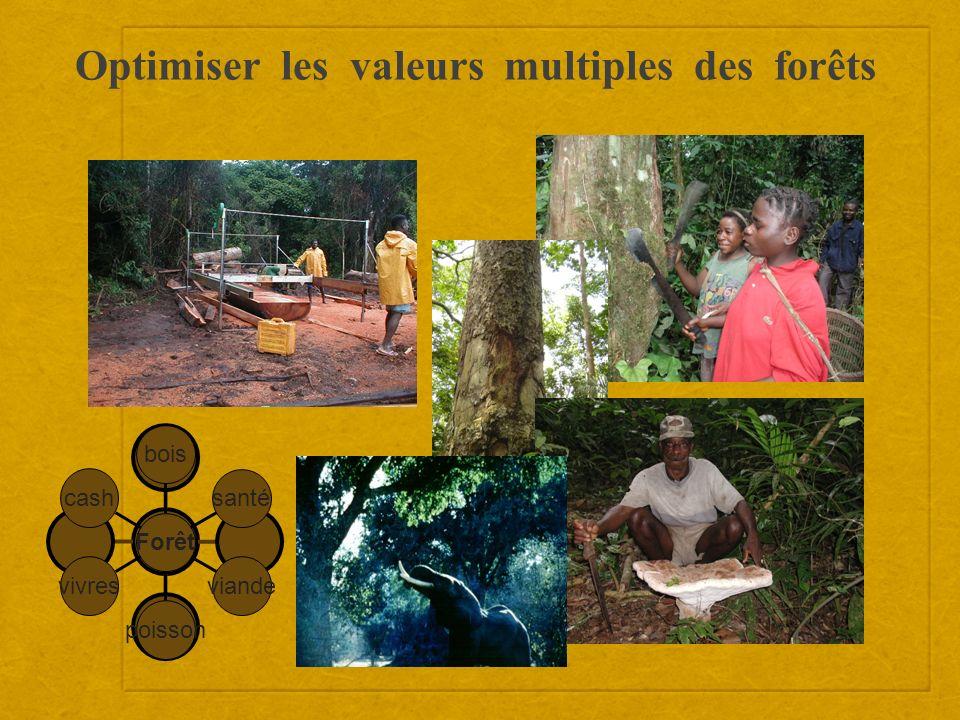 Optimiser les valeurs multiples des forêts cash vivres poisson viande santé bois Forêt