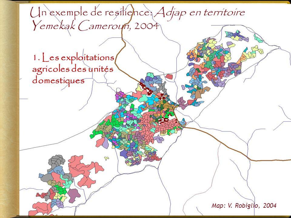 1.Les exploitations agricoles des unités domestiques Map: V.