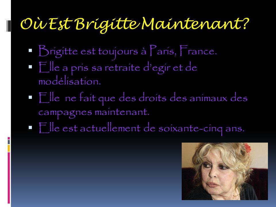 Où Est Brigitte Maintenant ? Brigitte est toujours à Paris, France. Elle a pris sa retraite degir et de modélisation. Elle ne fait que des droits des