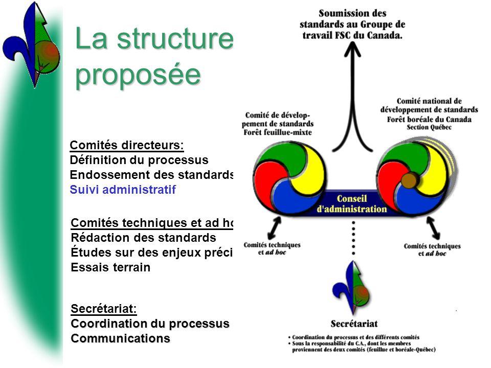 La structure proposée Coordination du processus Secrétariat: Coordination du processusCommunications Comités directeurs: Définition du processus Endos
