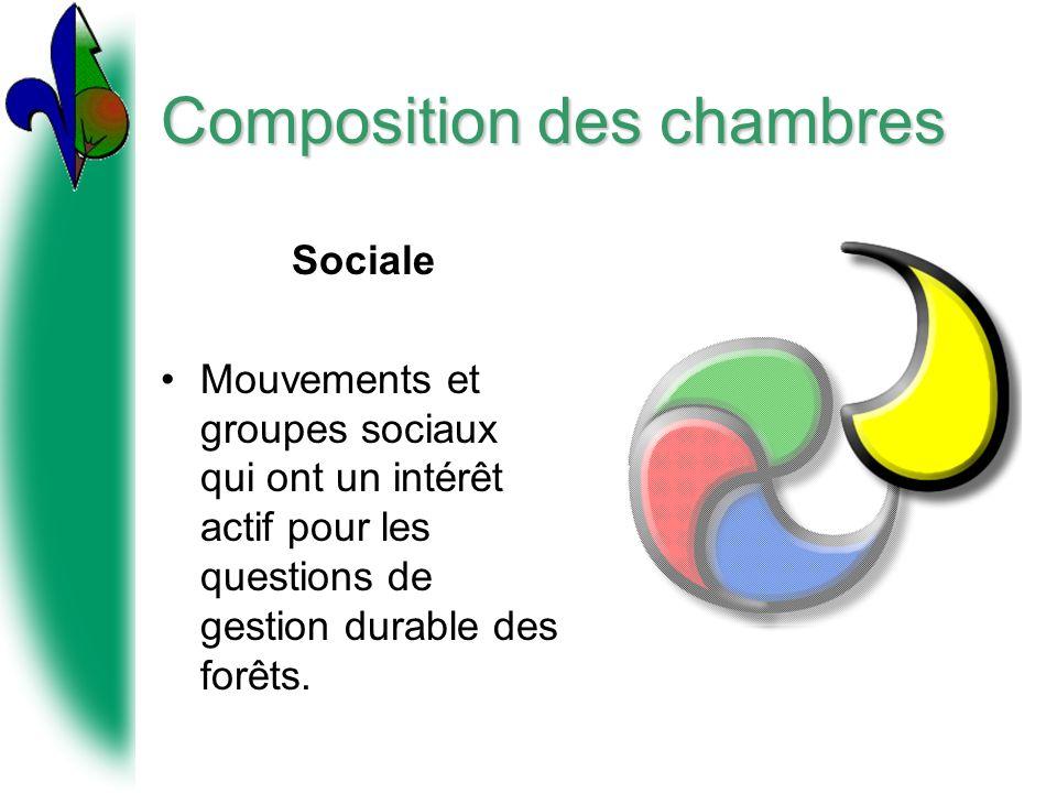 Composition des chambres Sociale Mouvements et groupes sociaux qui ont un intérêt actif pour les questions de gestion durable des forêts.
