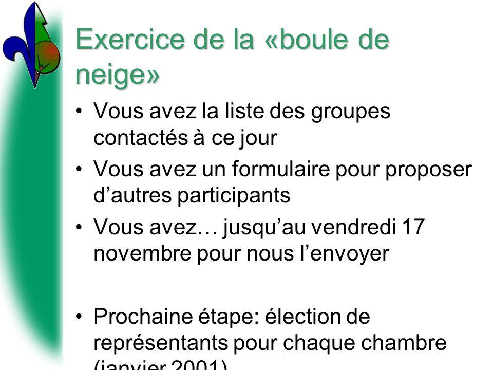 Exercice de la «boule de neige» Vous avez la liste des groupes contactés à ce jour Vous avez un formulaire pour proposer dautres participants Vous ave