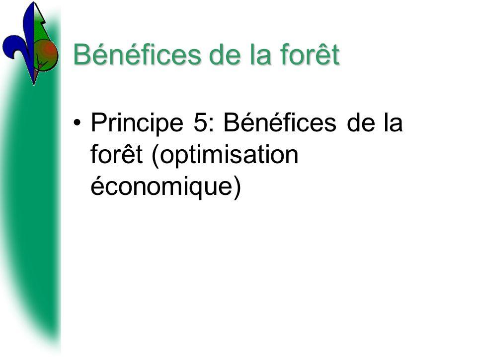Bénéfices de la forêt Principe 5: Bénéfices de la forêt (optimisation économique)