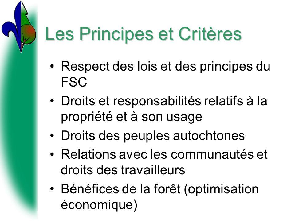 Les Principes et Critères Respect des lois et des principes du FSC Droits et responsabilités relatifs à la propriété et à son usage Droits des peuples autochtones Relations avec les communautés et droits des travailleurs Bénéfices de la forêt (optimisation économique)