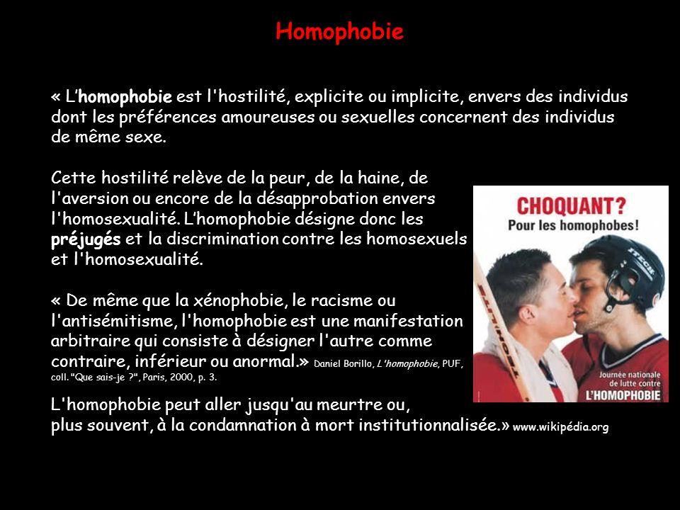 Homophobie « Lhomophobie est l'hostilité, explicite ou implicite, envers des individus dont les préférences amoureuses ou sexuelles concernent des ind