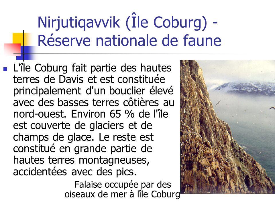 Nirjutiqavvik (Île Coburg) - Réserve nationale de faune L'île Coburg fait partie des hautes terres de Davis et est constituée principalement d'un bouc