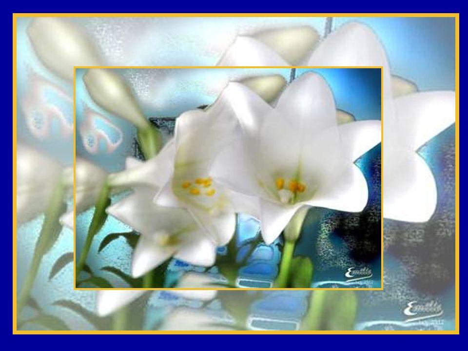 Il faut que LA VIE éclate comme sépanouit le bourgeon, un matin de printemps, et comme se lève le ressuscité au matin de Pâques, après le drame de sa
