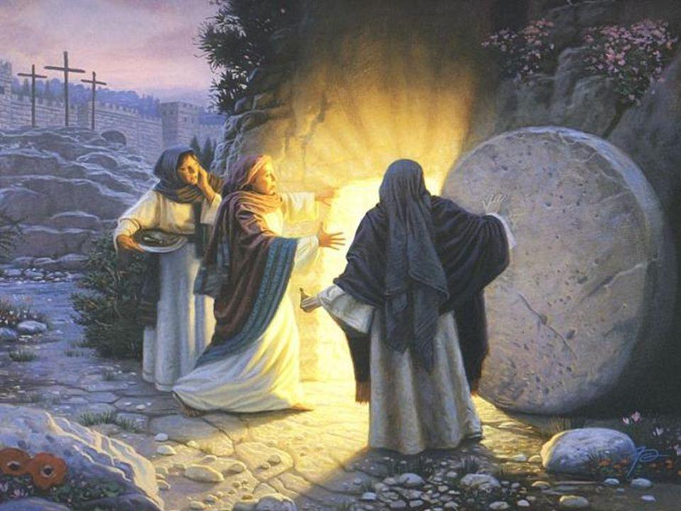 Il faut que la VÉRITÉ éclate comme est reconnu le prophète après tant de critiques, daccusations et de suspicions, et comme se répand la Bonne Nouvell