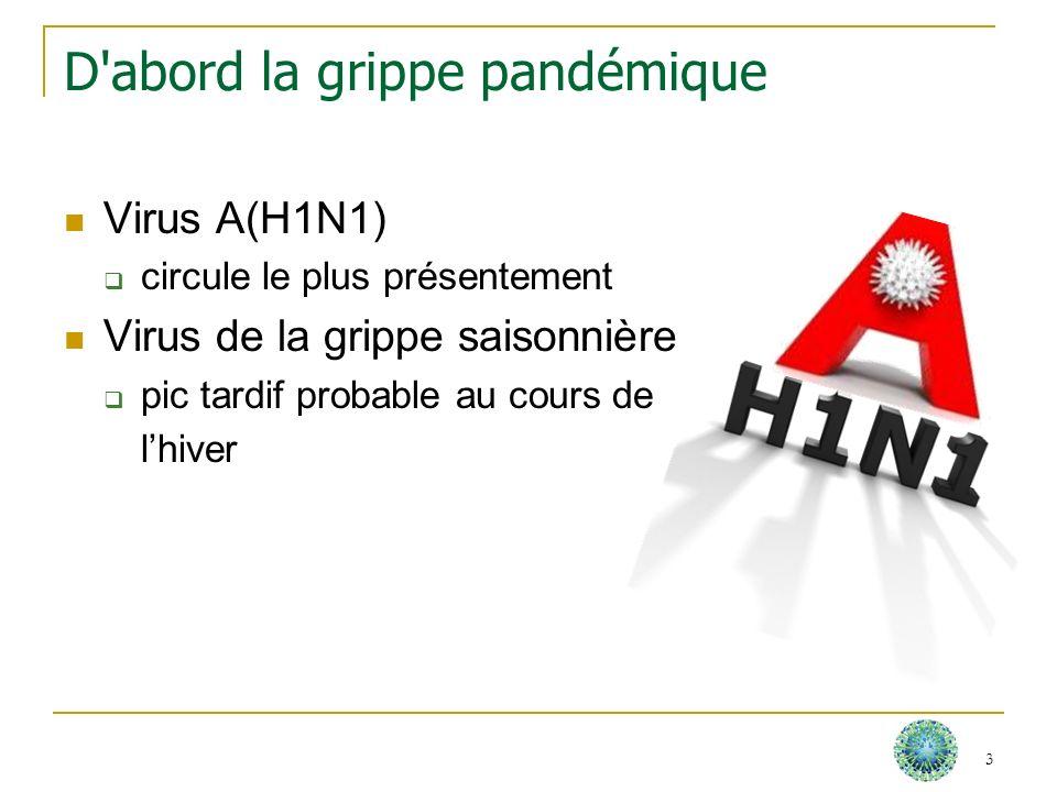 Pandémie de grippe A(H1N1) : un nouveau virus Il nexiste pas (ou peu) d immunité dans la population Sa transmission est soutenue et documentée dans le monde entier 4