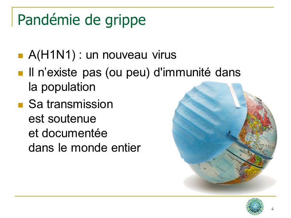 Vaccin contre la grippe A(H1N1) Vaccin monovalent (une seule souche) Homologation selon les mêmes règles de sécurité et dévaluation que les vaccins pour la grippe saisonnière 5