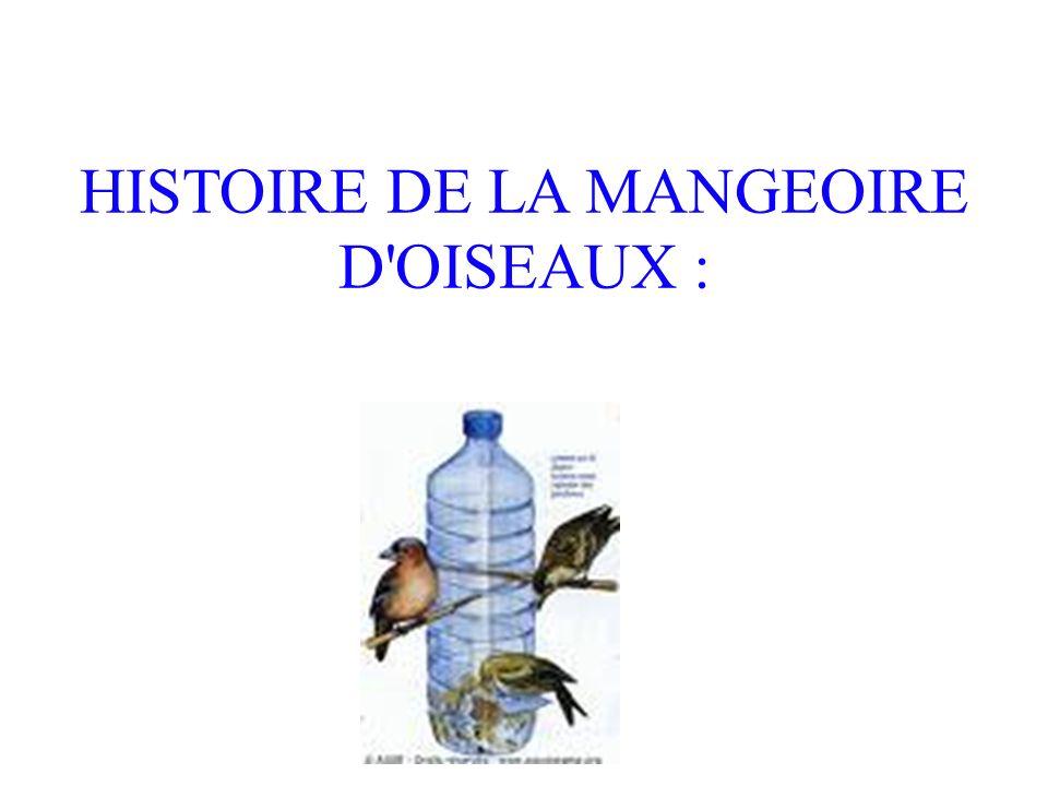 HISTOIRE DE LA MANGEOIRE D OISEAUX :