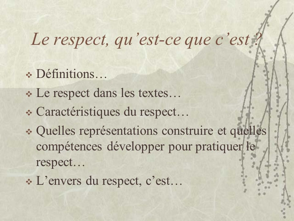 Le respect, quest-ce que cest ? Définitions… Le respect dans les textes… Caractéristiques du respect… Quelles représentations construire et quelles co
