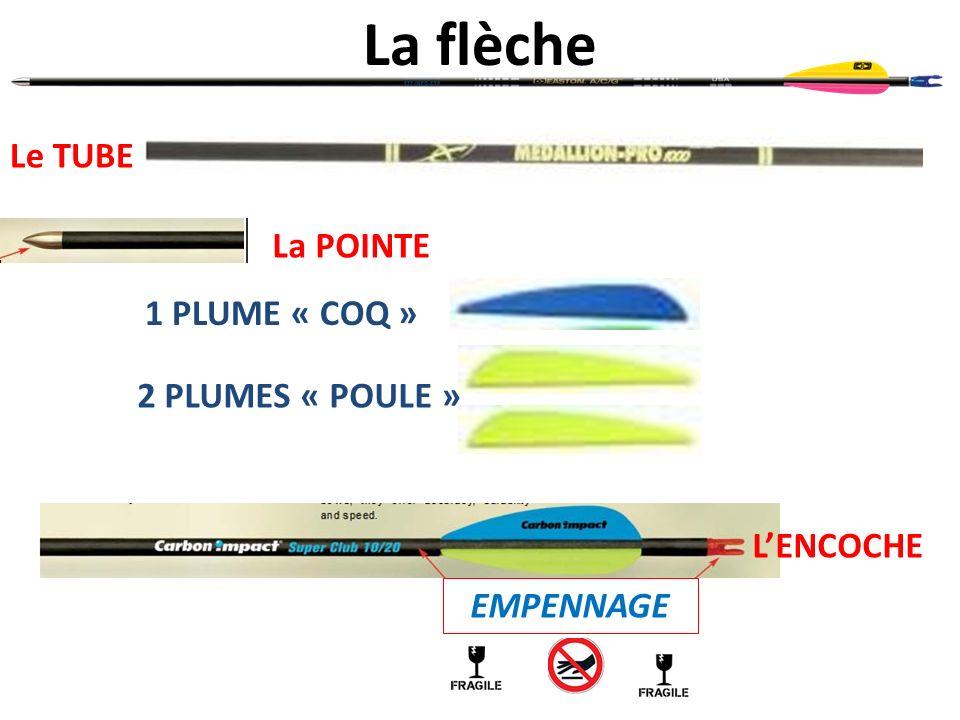 La flèche Le TUBE La POINTE LENCOCHE 2 PLUMES « POULE » 1 PLUME « COQ » EMPENNAGE