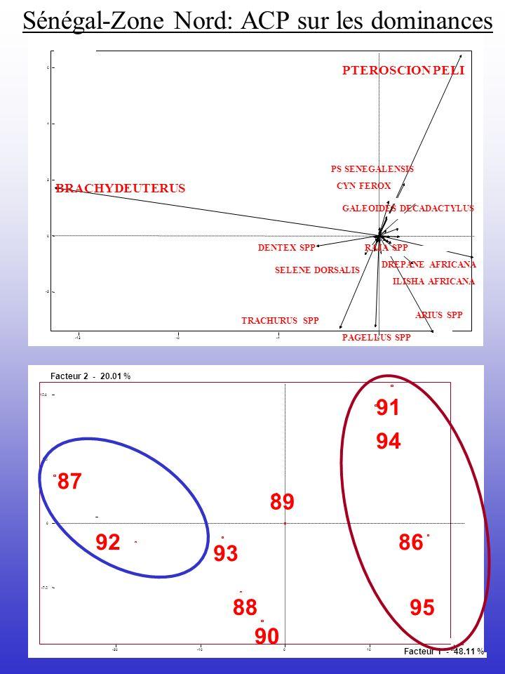 -20-1001020 -7.5 0 7.5 15.0 Facteur 1 - 48.11 % Facteur 2 - 20.01 % 87 94 91 86 95 89 93 92 88 90 -12-8-40 -2 0 2 4 6 BRACHYDEUTERUS PTEROSCION PELI I