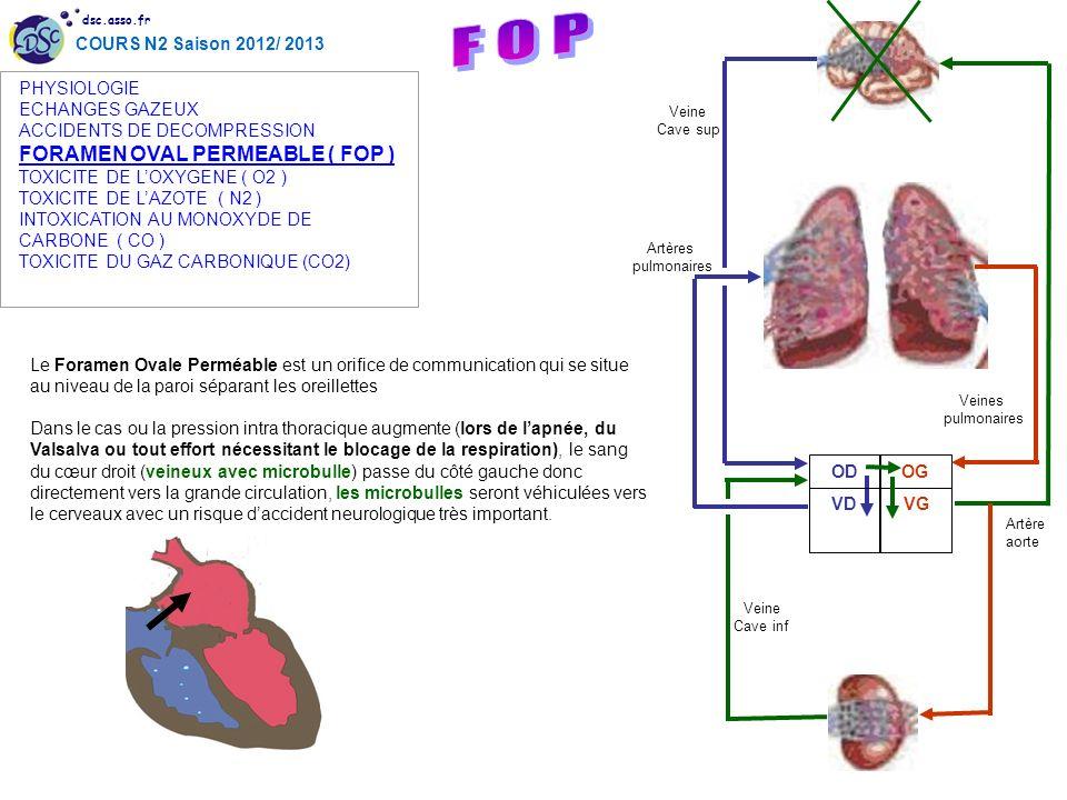 dsc.asso.fr COURS N2 Saison 2012/ 2013 Le Foramen Ovale Perméable est un orifice de communication qui se situe au niveau de la paroi séparant les orei