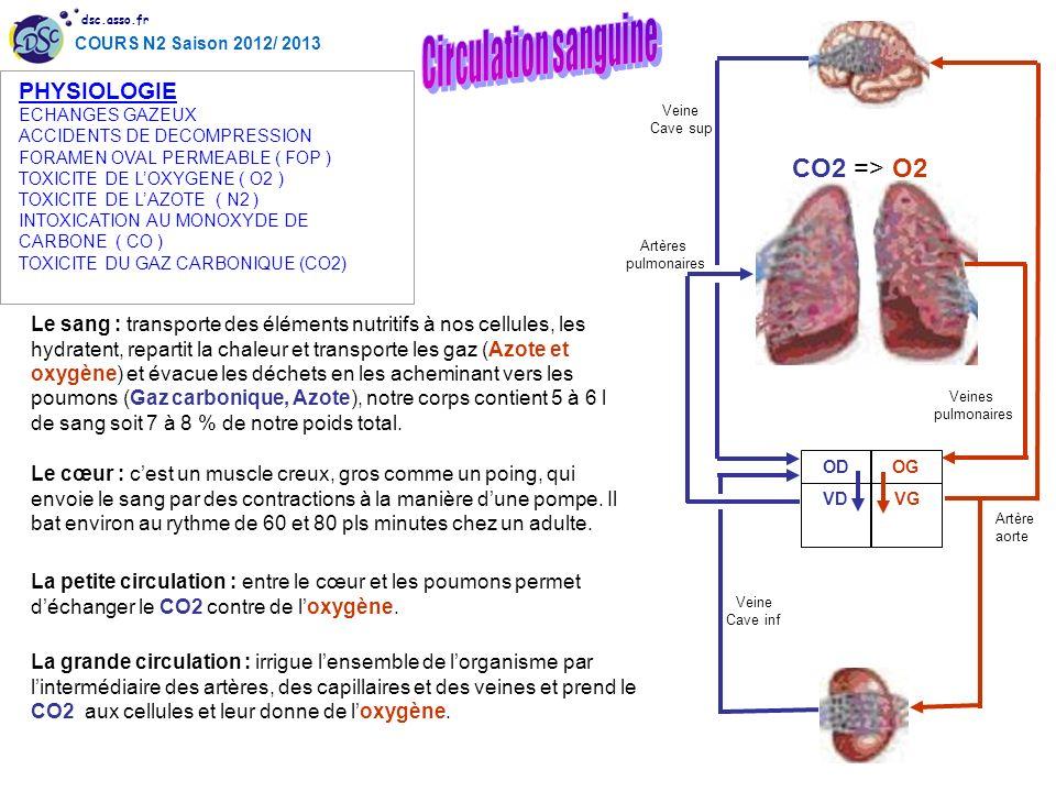 dsc.asso.fr COURS N2 Saison 2012/ 2013 Le sang : transporte des éléments nutritifs à nos cellules, les hydratent, repartit la chaleur et transporte le