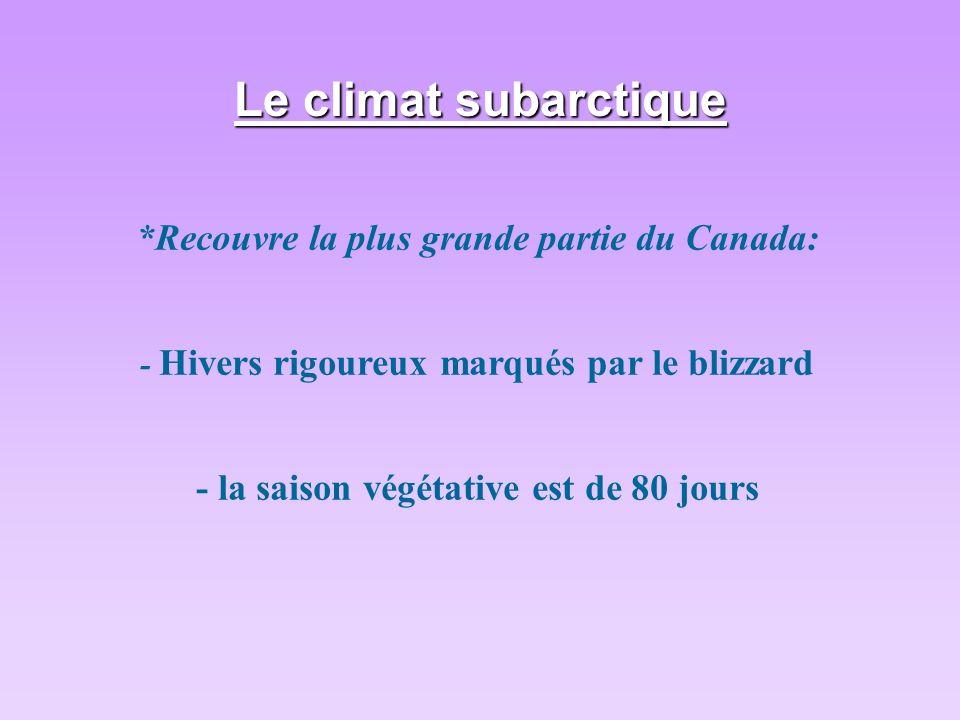 Le climat subarctique *Recouvre la plus grande partie du Canada: - Hivers rigoureux marqués par le blizzard - la saison végétative est de 80 jours