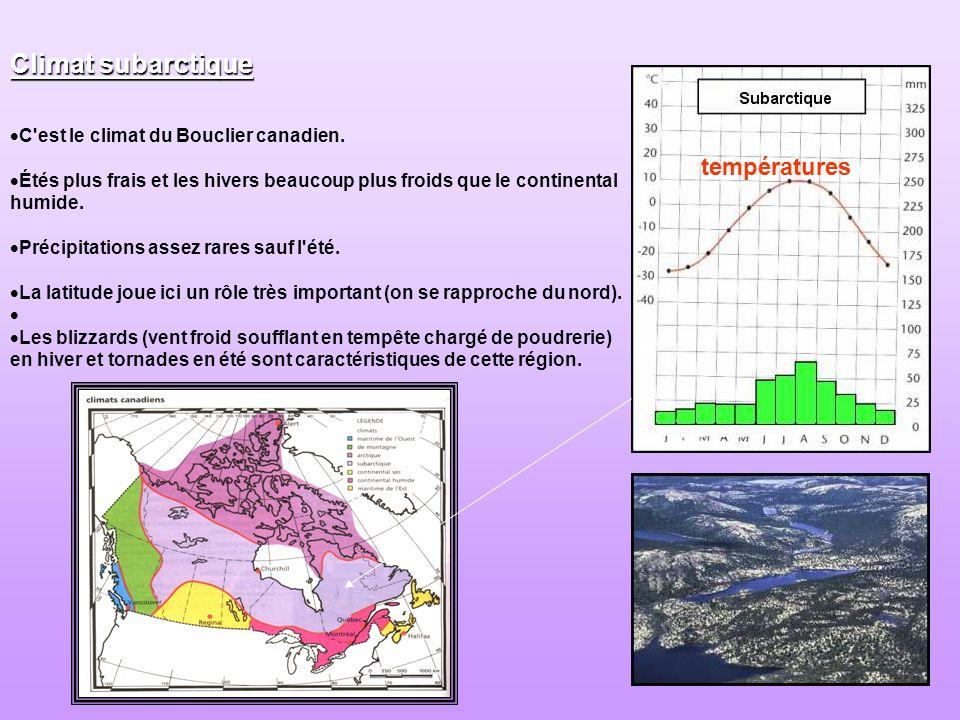 C'est le climat du Bouclier canadien. Étés plus frais et les hivers beaucoup plus froids que le continental humide. Précipitations assez rares sauf l'