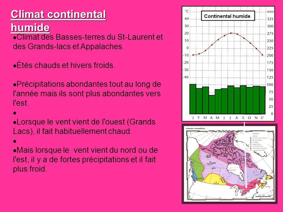 Climat des Basses-terres du St-Laurent et des Grands-lacs et Appalaches. Étés chauds et hivers froids. Précipitations abondantes tout au long de l'ann