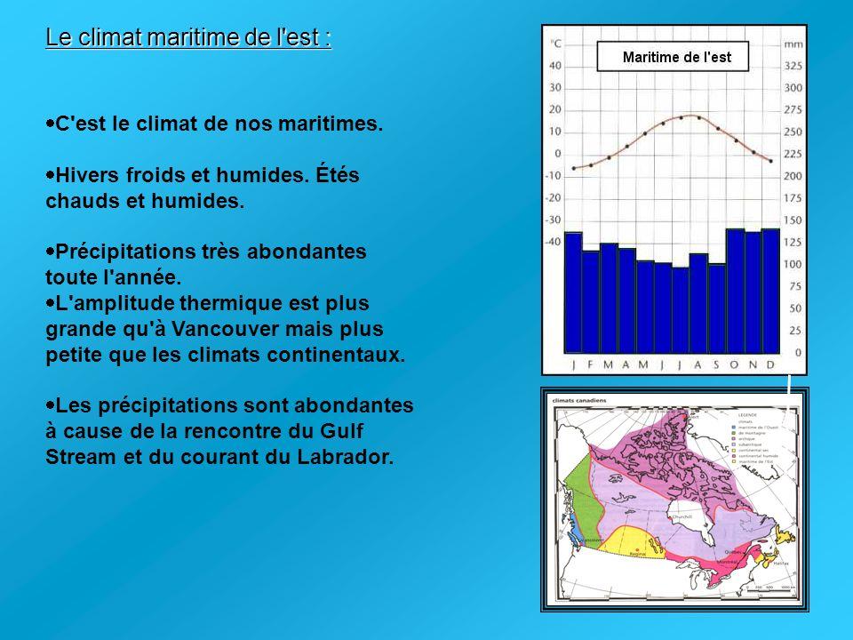 Le climat maritime de l'est : C'est le climat de nos maritimes. Hivers froids et humides. Étés chauds et humides. Précipitations très abondantes toute