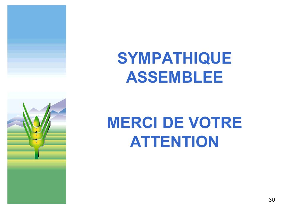 30 SYMPATHIQUE ASSEMBLEE MERCI DE VOTRE ATTENTION