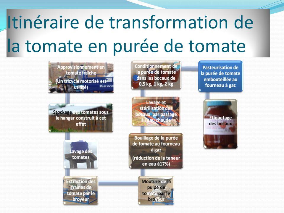 Itinéraire de transformation de la tomate en purée de tomate