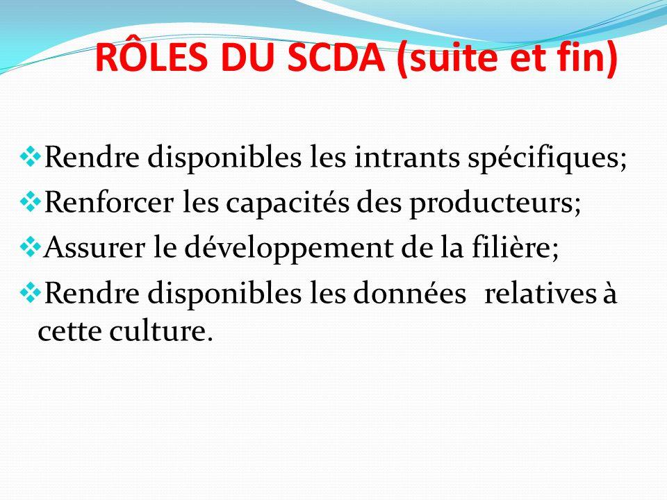RÔLES DU SCDA (suite et fin) Rendre disponibles les intrants spécifiques; Renforcer les capacités des producteurs; Assurer le développement de la filière; Rendre disponibles les données relatives à cette culture.