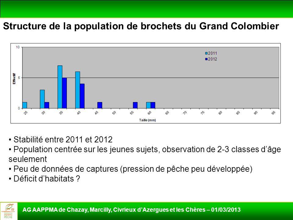 Structure de la population de brochets du Grand Colombier AG AAPPMA de Chazay, Marcilly, Civrieux dAzergues et les Chères – 01/03/2013 Stabilité entre
