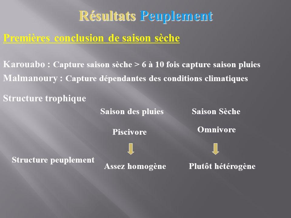 Premières conclusion de saison sèche Karouabo : Capture saison sèche > 6 à 10 fois capture saison pluies Structure trophique Saison des pluies Piscivo