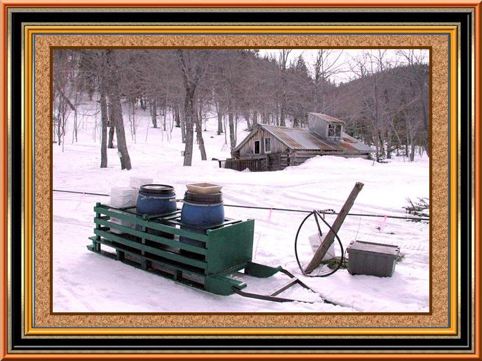 Le sirop dérable est un produit unique parce que sa saveur et sa couleur varient en cours de saison.
