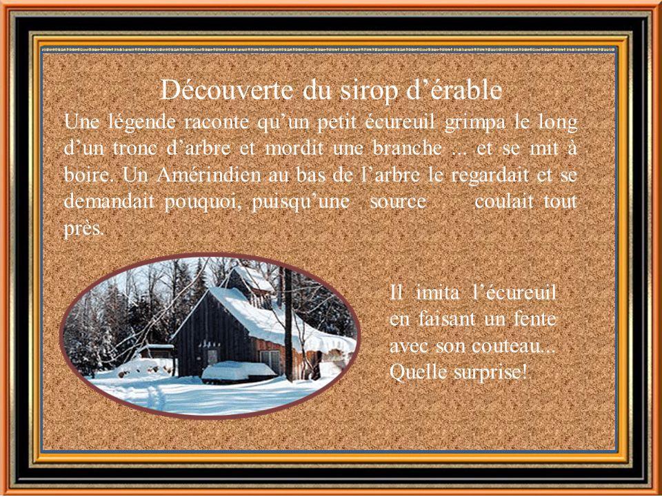 Le sirop dérable: ses origines et ses produits...